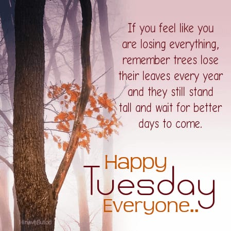 Good Morning Quotes for Tuesday