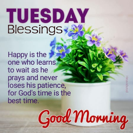 Good Morning Tuesday Blessing Quotes images for status