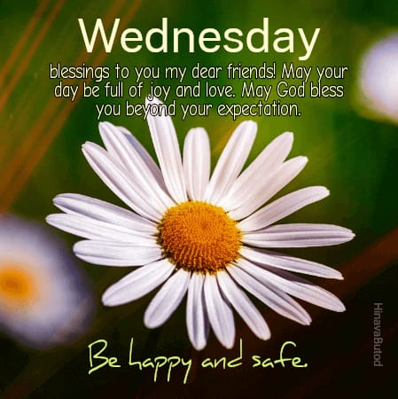 Good Morning Wednesday Quotes with Flower Background images