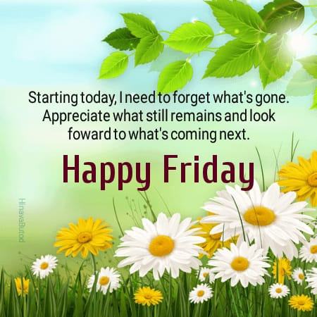 Download Good Morning Friday Pictures