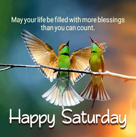 Happy Saturday Quotes images for whatsapp status