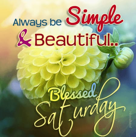 Beautiful Good Morning Blessing Quotes images