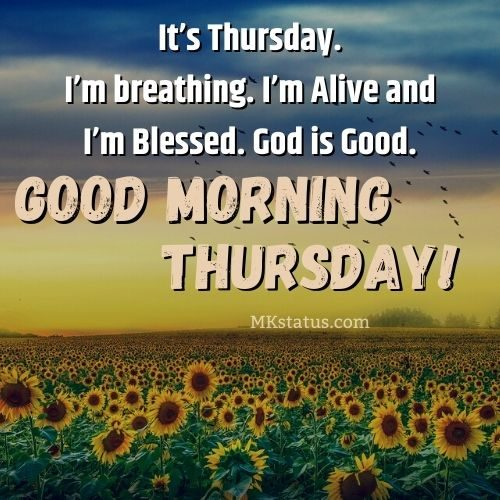 Good Morning Thuresday Quotes Images