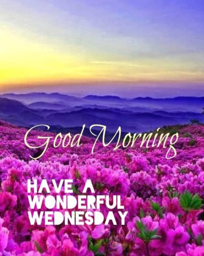 Good morning Wednesday blessings