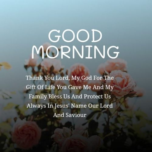 Good Morning messages photos for status