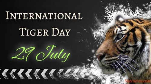 Happy Tiger Day wishes images