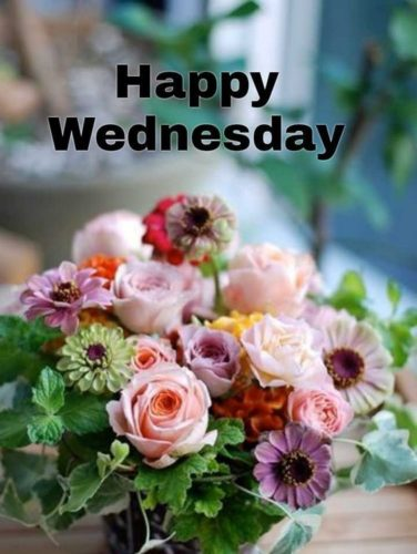 Good morning Wednesday blessings pictures
