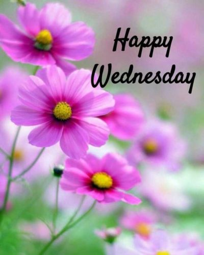 Good Morning Wednesday blessings Quotes photos