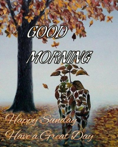 Happy Sunday Good Morning love Images