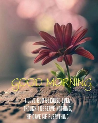 Good Morning Blessings messages images