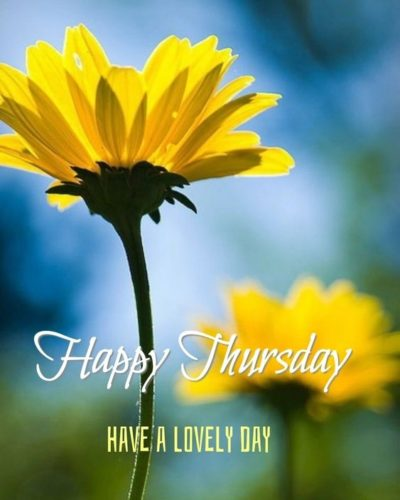 Happy Thursday Good Morning images for FB status