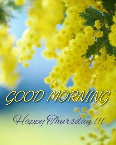 Happy Thursday Good Morning quotes & messages images