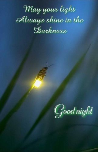 Good Night 2020 greeting images for status