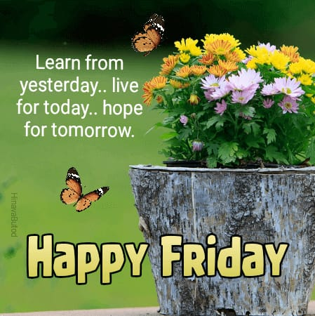 Happy Good Morning Friday Status Messages images