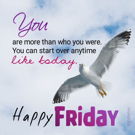 Happy Friday Good Morning Status images