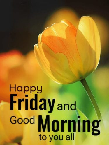 Good Morning Friday wishes images