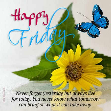 Happy Good Morning Friday Status Quotes images
