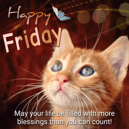 Good Morning Friday wishes Quotes images