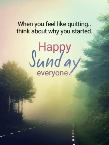 Download Good Morning Sunday Images
