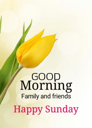 Happy Good Morning Sunday Images for Instagram status & DP