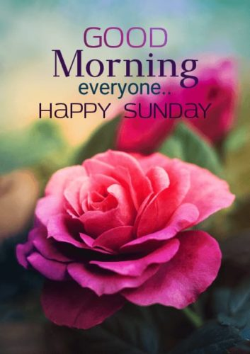 Happy Good Morning Sunday Images for Whats-app status & DP