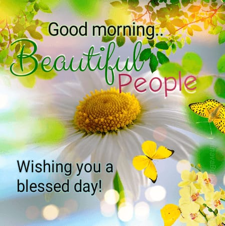 Beautiful Good Morning Monday wishes quotes status