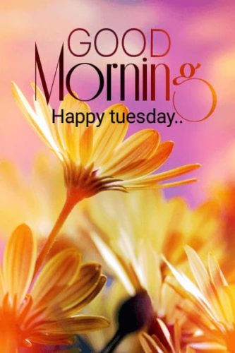 Good Morning Tuesday wishes images