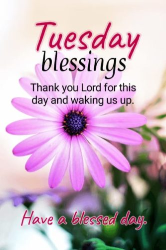Good Morning Tuesday Blessing messages images