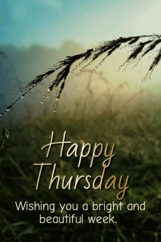 Happy Thursday Morning wishes images for status