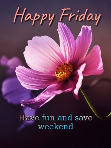 Good Morning Friday wishes flower images with quotes
