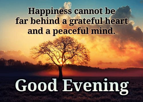 Beautiful Good Evening wishes images for status