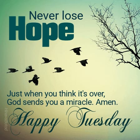 Happy Tuesday Wishes Quotes images