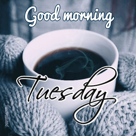 Good morning Tuesday Tea images