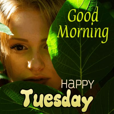 Good morning Tuesday wishes images | Happy Tuesday