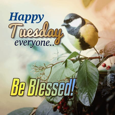 Happy Tuesday Wishes Blessed Quotes images