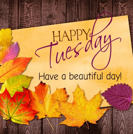 Happy Tuesday Wishes images
