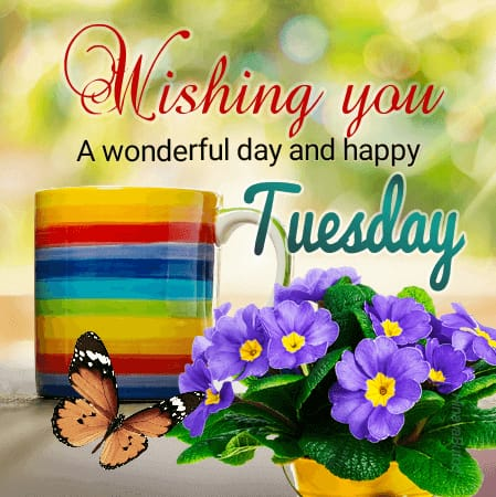 Beautiful Good morning Tuesday greeting images
