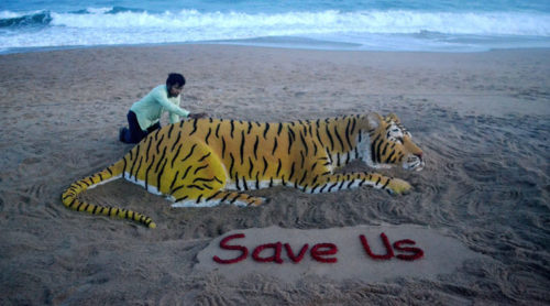 International Tiger Day wishes creative images