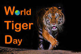 World Tiger day images