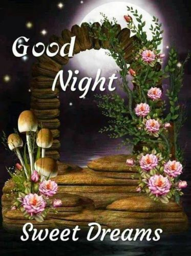 Download Beautiful Good Night wishes images