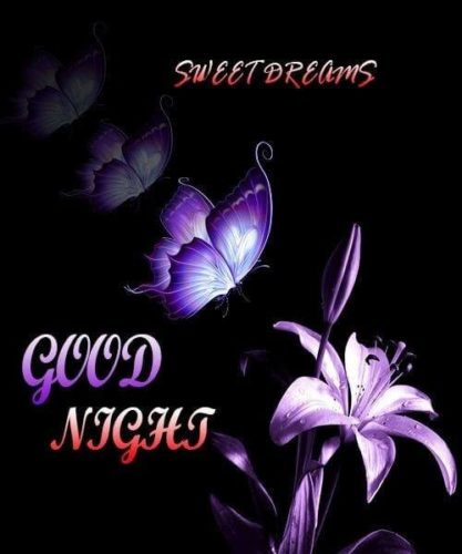 Good Night Wishes Flowers images