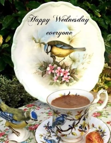 Download good morning Wednesday blessings pictures