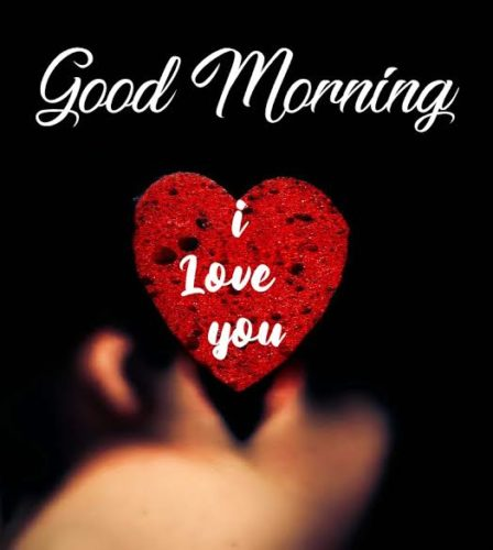 Good Morning My Love  images for free downloads
