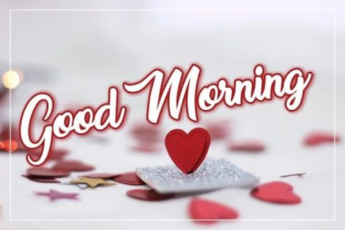 Good Morning My Love wishes images