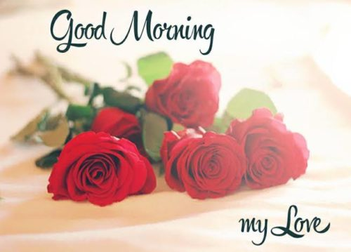 Best new Good Morning My Love greeting images