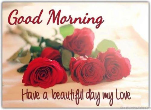 Good Morning My Love saying with Red Rose images