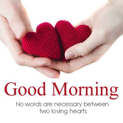 Latest Good Morning My Love Quotes greeting images