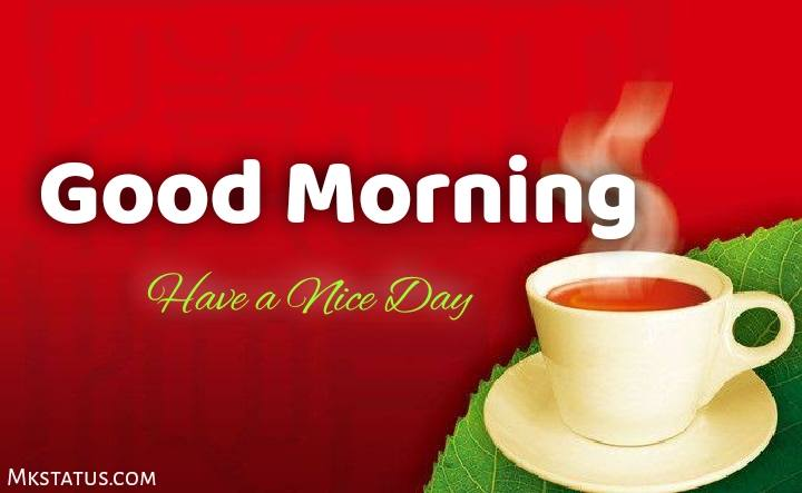 Download Tea Good Morning images