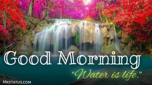 Latest good morning water images