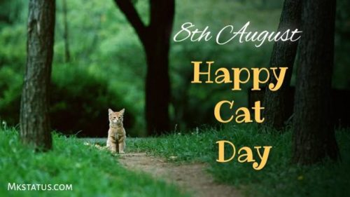 Happy Cat Day wishes images for status